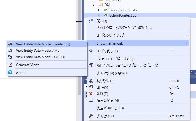 View Entity Data Model (Read-only)